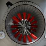 Particolare di cilindro forato inox e albero diraspatore con spatole in gomma regolabili